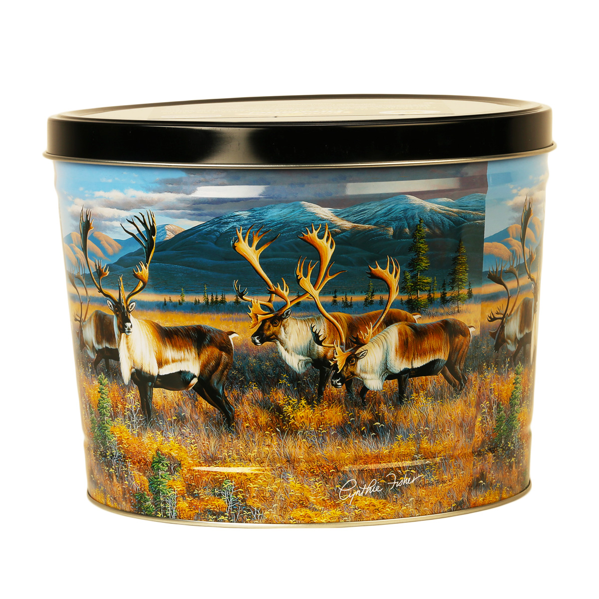 Northern Nomads Decorative Tin
